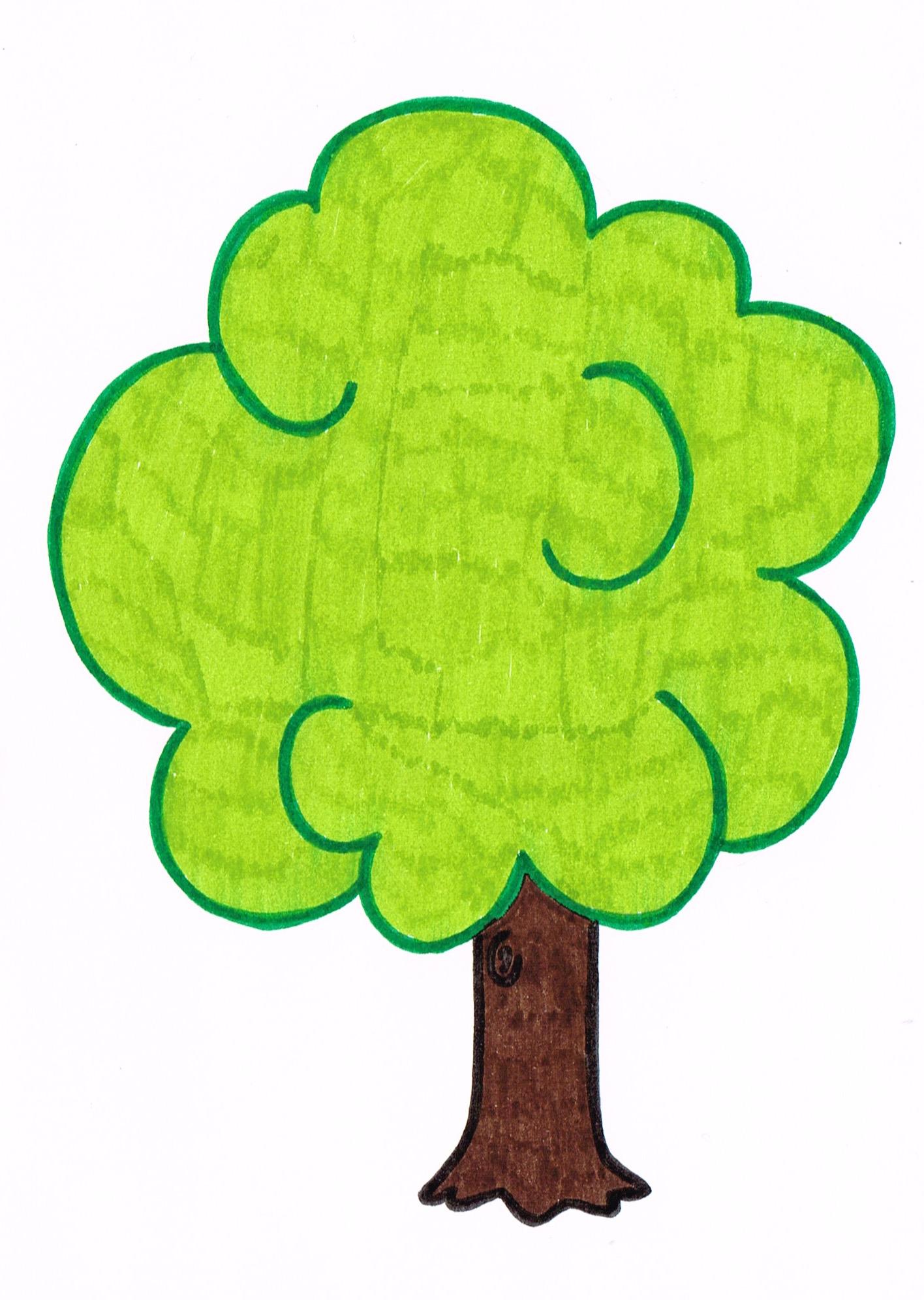Scenarios/assets/Baum 2.jpeg