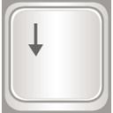 TULIP/config/assets/arrow-2.png